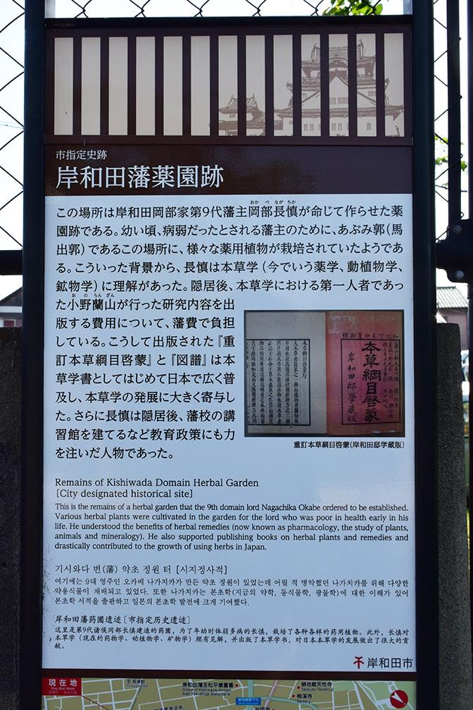 犬走りの代表的な城、岸和田城攻城記。 その3 ~二ノ丸~_e0158128_13062363.jpg
