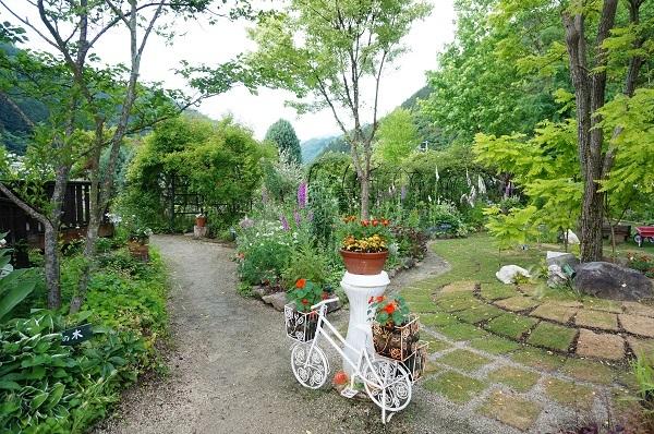 また、夕方のお庭_e0365880_22132676.jpg