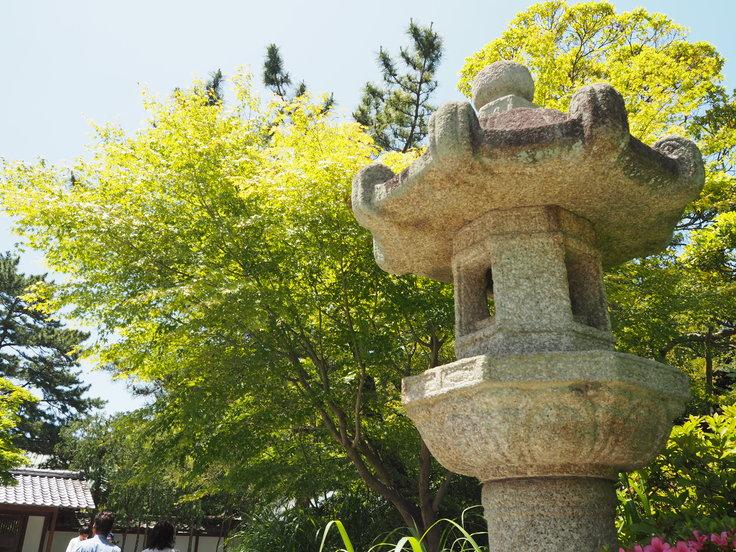 鎌倉の大仏さま(5/30ひとり遠足)_c0212604_15731100.jpg