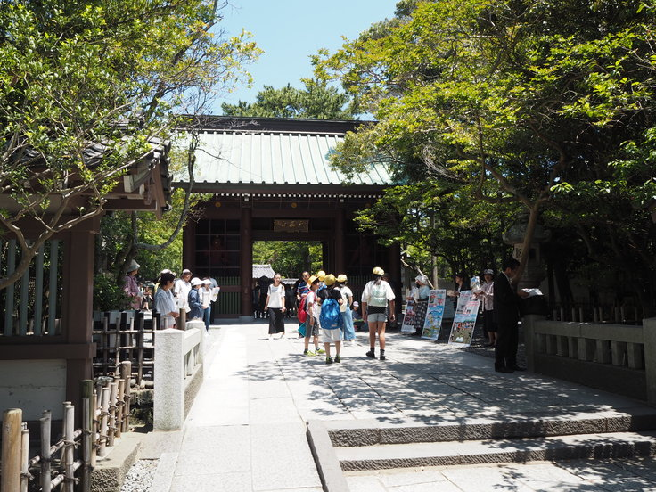 鎌倉の大仏さま(5/30ひとり遠足)_c0212604_15814100.jpg