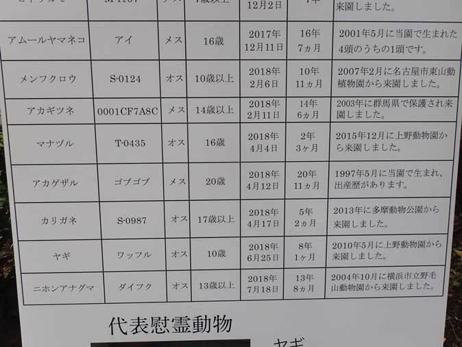 井の頭自然文化園 動物慰霊祭( September 2018)_b0355317_12285934.jpg