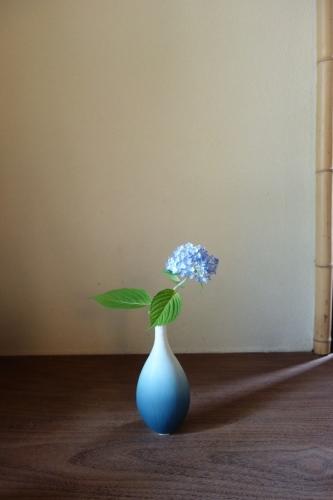 初夏の花_a0197730_15055715.jpg