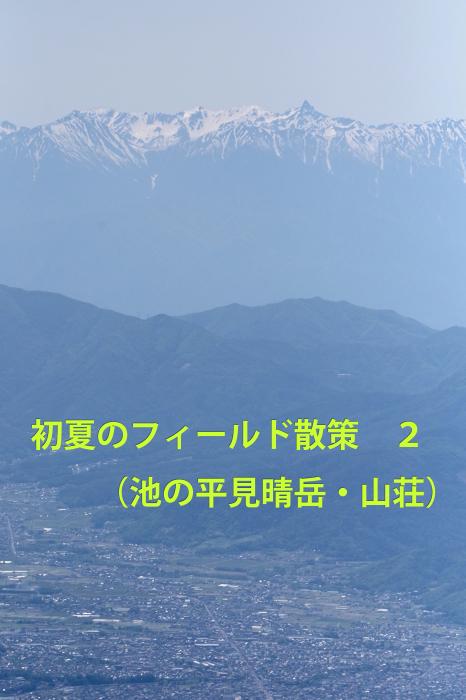 b0144049_16363653.jpg