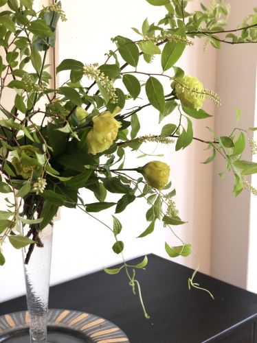 この季節はスモクツリーが綺麗。_d0139350_18334749.jpg