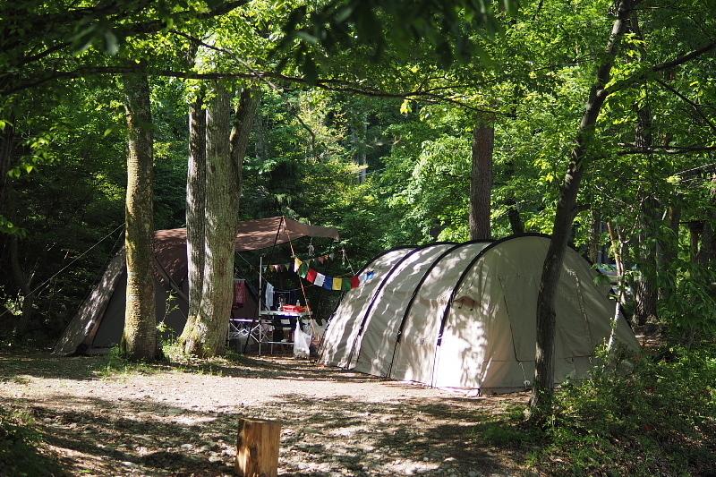 【キャンプ場レポート】グリーンパークふきわれ ③ ~天の川と新緑編_b0008655_12360587.jpg