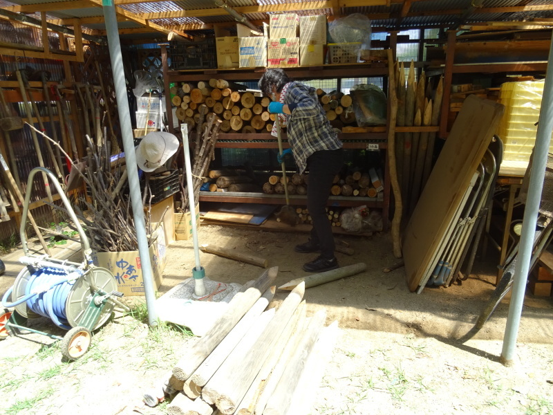 土砂崩れ復旧工事跡の斜面に土留を作る・・・うみべの森_c0108460_22503196.jpg