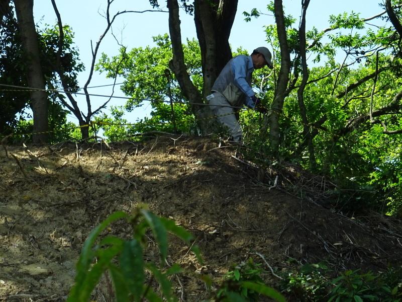 土砂崩れ復旧工事跡の斜面に土留を作る・・・うみべの森_c0108460_22525836.jpg