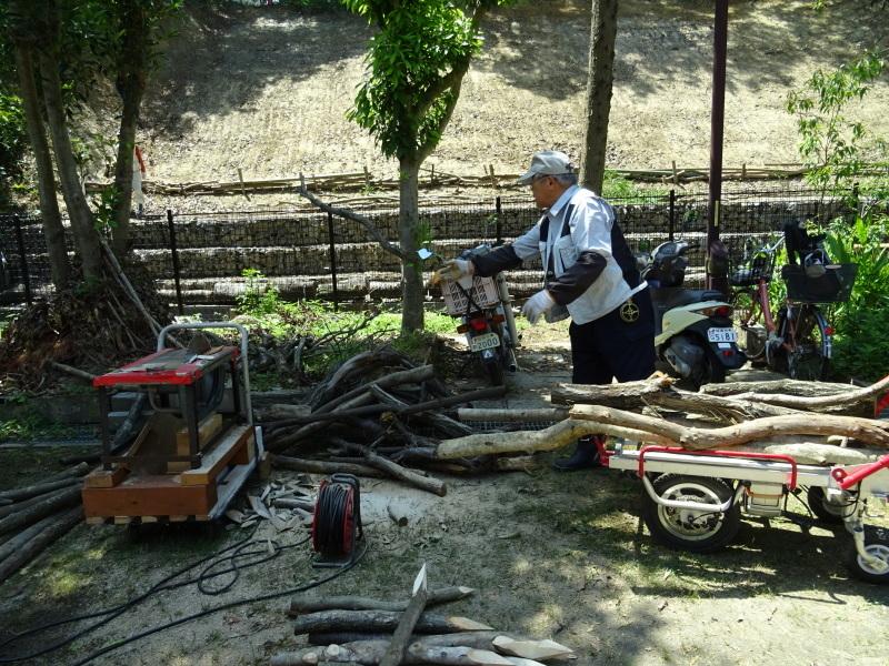 土砂崩れ復旧工事跡の斜面に土留を作る・・・うみべの森_c0108460_22525965.jpg