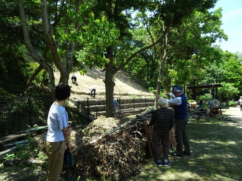土砂崩れ復旧工事跡の斜面に土留を作る・・・うみべの森_c0108460_22535579.jpg