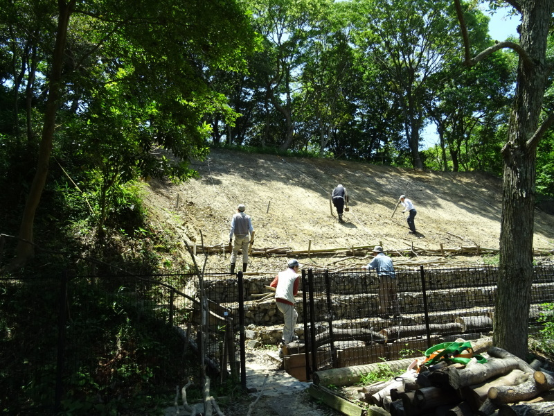 土砂崩れ復旧工事跡の斜面に土留を作る・・・うみべの森_c0108460_22552424.jpg