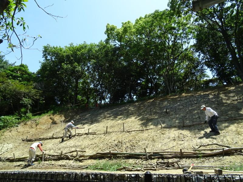 土砂崩れ復旧工事跡の斜面に土留を作る・・・うみべの森_c0108460_22562759.jpg