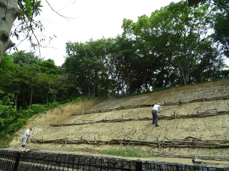 土砂崩れ復旧工事跡の斜面に土留を作る・・・うみべの森_c0108460_22572612.jpg