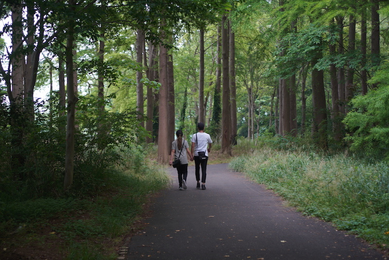 静かな散歩道_a0350198_08062750.jpg