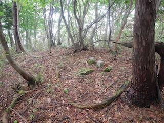 花崗岩の沢から癒しのブナ林、そして棚田跡…殿又谷_c0359615_22014605.jpg
