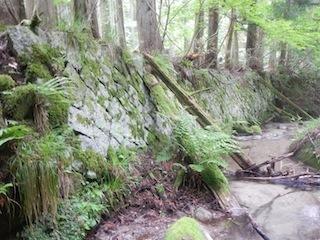 花崗岩の沢から癒しのブナ林、そして棚田跡…殿又谷_c0359615_22032266.jpg