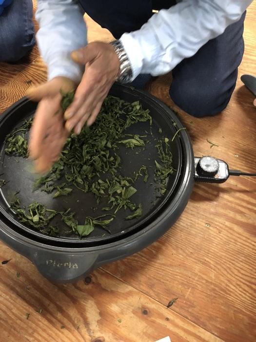 サロンドシャンティ大人の遠足 梅が島へ 茶摘みツアー_a0169924_21522459.jpeg