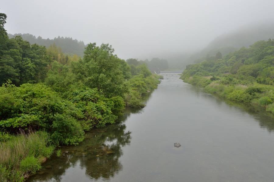濃霧_b0223668_06185310.jpg