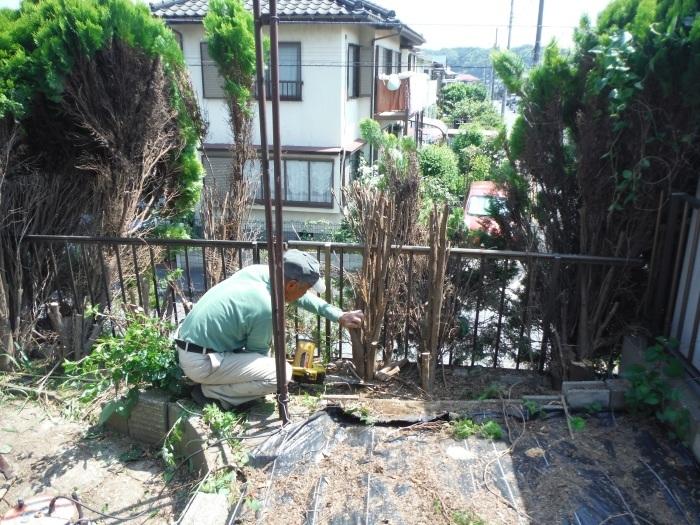 小工事 ~ 植木伐採他_d0165368_03290191.jpg