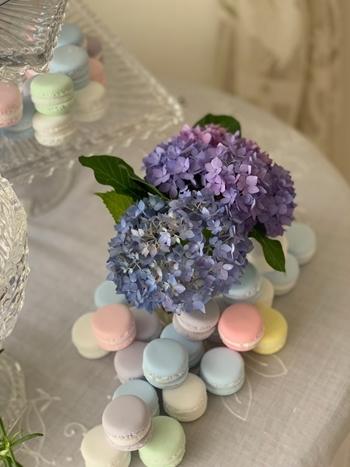 マリーアントワネット気分で。hidamari 初夏のテーブルとフランス式ティーパーティー_e0237680_11383127.jpg