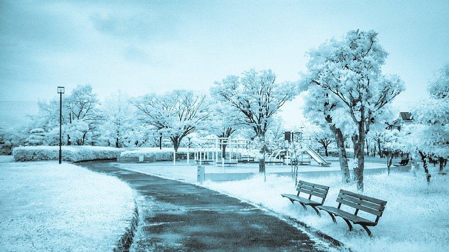 凍りついた梅雨の公園_d0353489_17462080.jpg