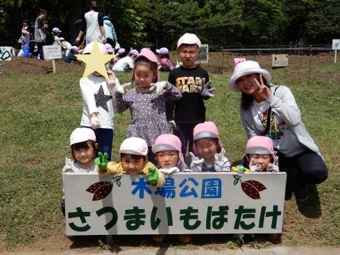 【南砂】芋の苗植え_a0267292_10530453.jpg