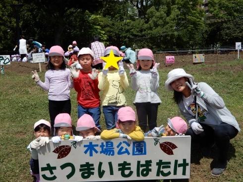 【南砂】芋の苗植え_a0267292_10531149.jpg