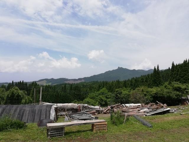 九州出張へ。_b0207631_10104057.jpg