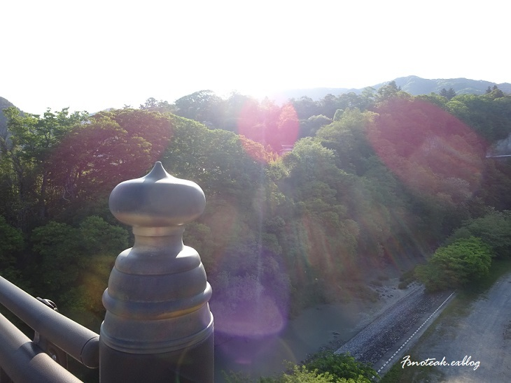 早朝散歩 ニセアカシア_d0356844_13223472.jpg
