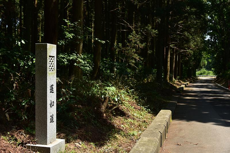 北国街道 金津から加賀温泉を行く_e0164563_13434064.jpg