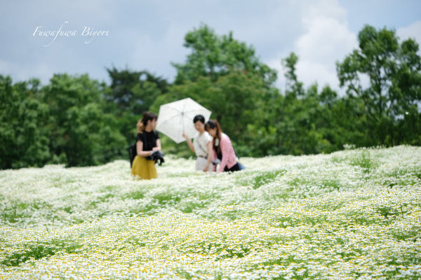 Aoyama Resort **_d0344864_22440047.jpg