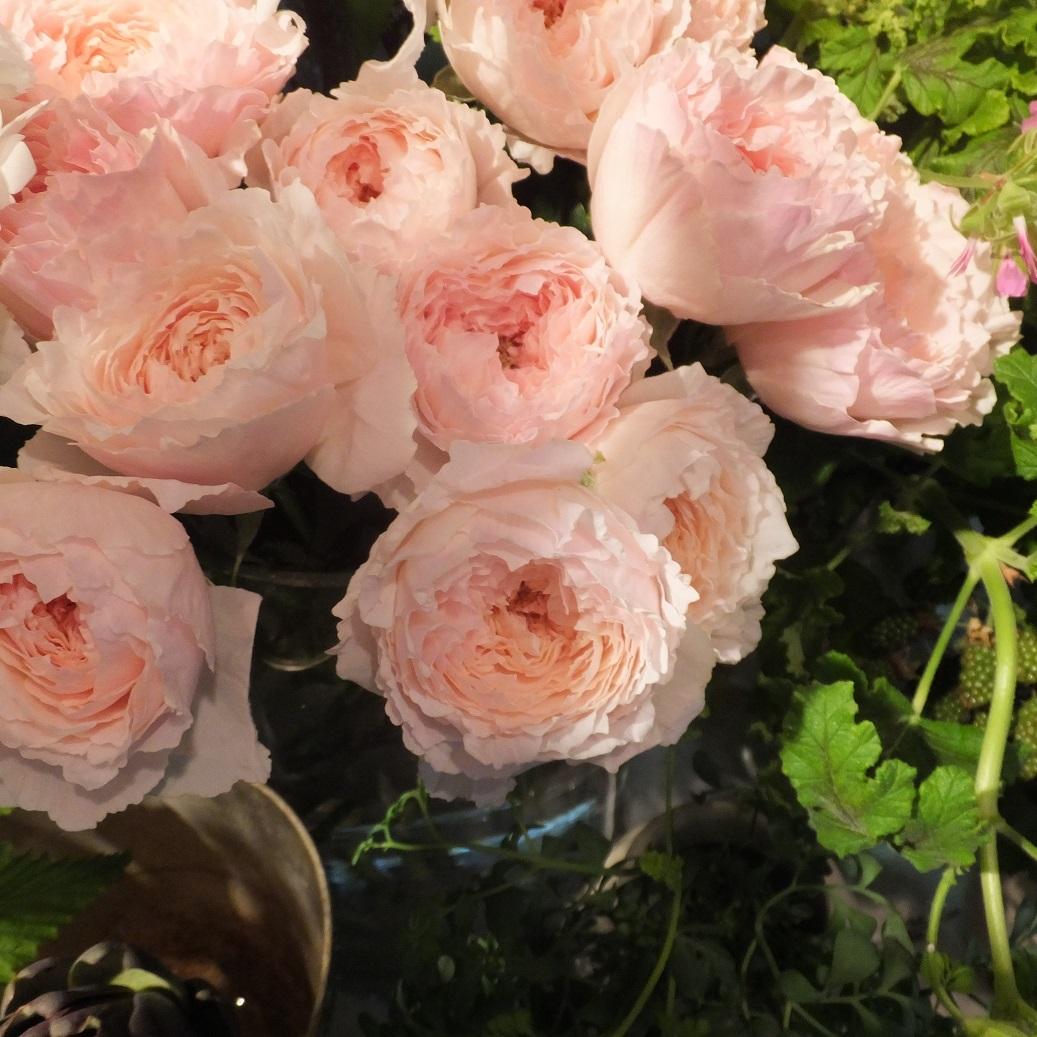 オークリーフ(6月の花たち)_f0049672_13040323.jpg