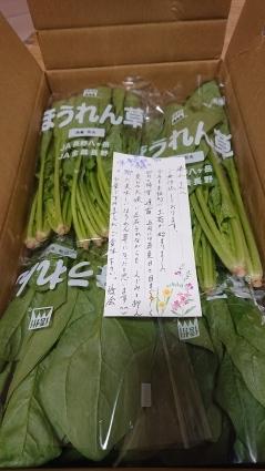 ほうれん草_f0185784_20292558.jpg