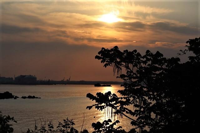 藤田八束の鉄道写真@東北八戸線にて、夕日の蕪島は絶景明日の幸せを祈りました・・・夕日がくれた元気のパワー_d0181492_09592967.jpg