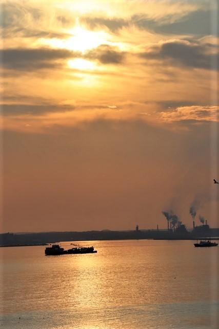 藤田八束の鉄道写真@東北八戸線にて、夕日の蕪島は絶景明日の幸せを祈りました・・・夕日がくれた元気のパワー_d0181492_09595340.jpg