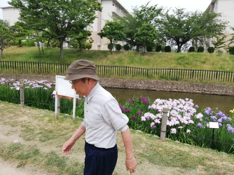 6日は白鷺公園へ花菖..._f0376200_01214530.jpg