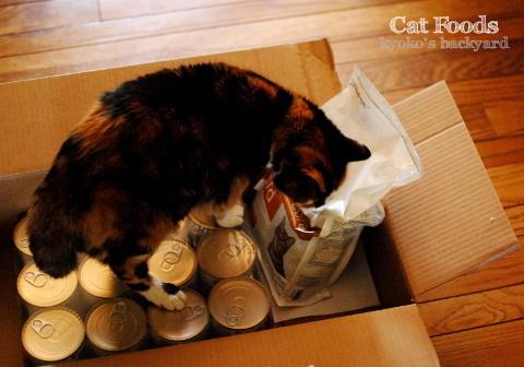隊長の猫缶チェック / アメリカでペットの処方食を割安で買う方法_b0253205_02501826.jpg
