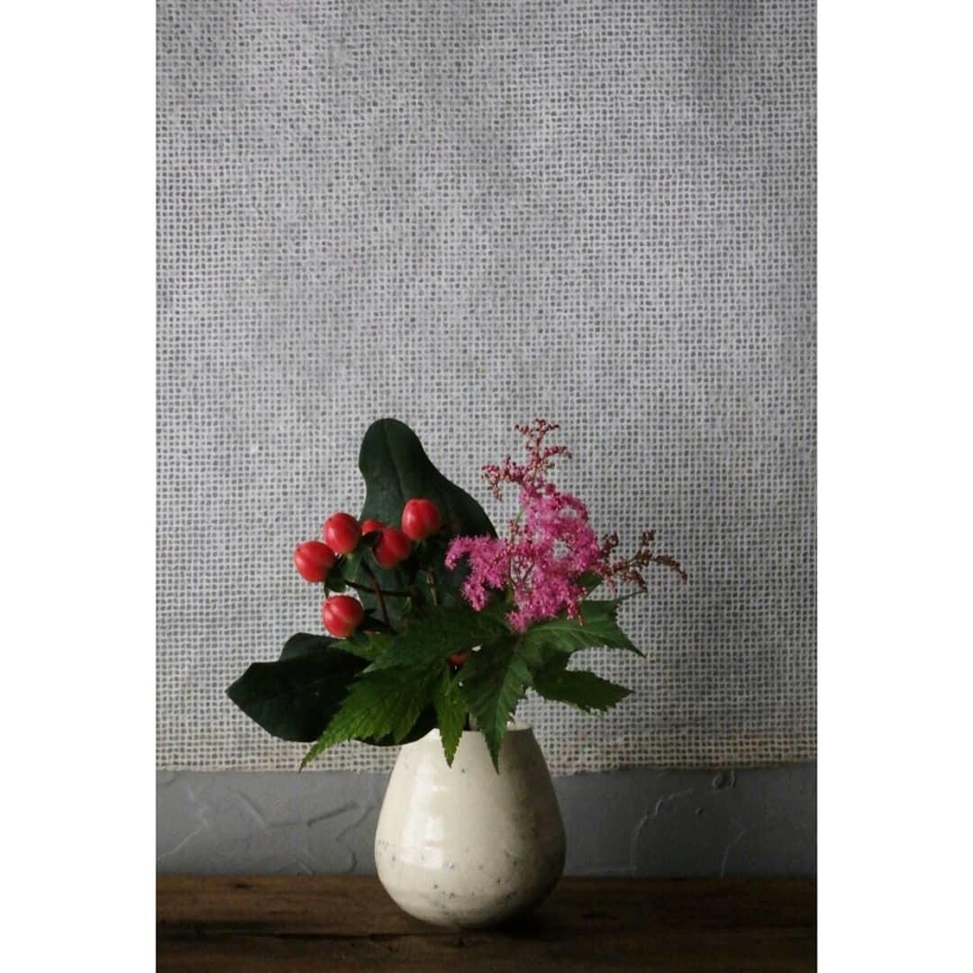 煎茶と花 - 花の章 -_f0351305_00005305.jpg