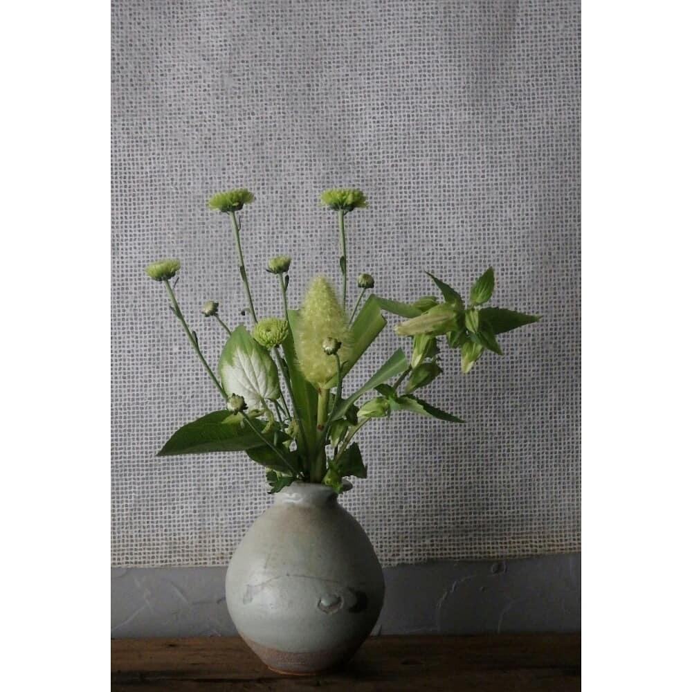 煎茶と花 - 花の章 -_f0351305_00022003.jpg