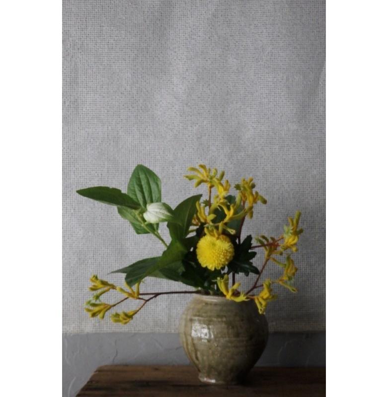 煎茶と花 - 花の章 -_f0351305_00024924.jpeg