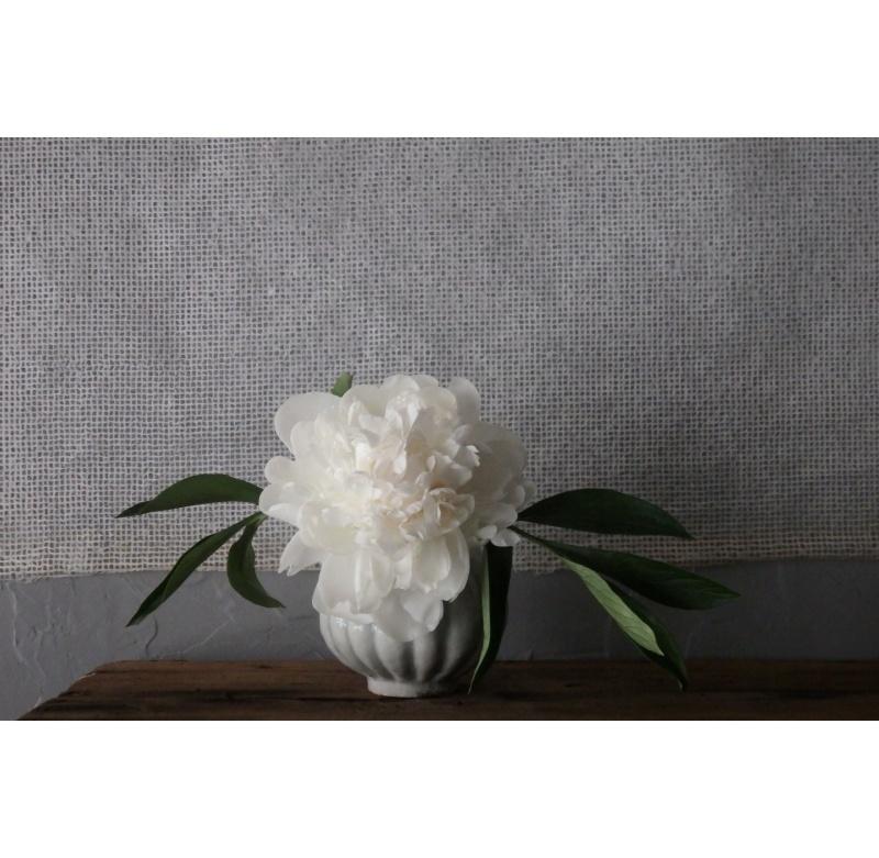 煎茶と花 - 花の章 -_f0351305_00043745.jpeg