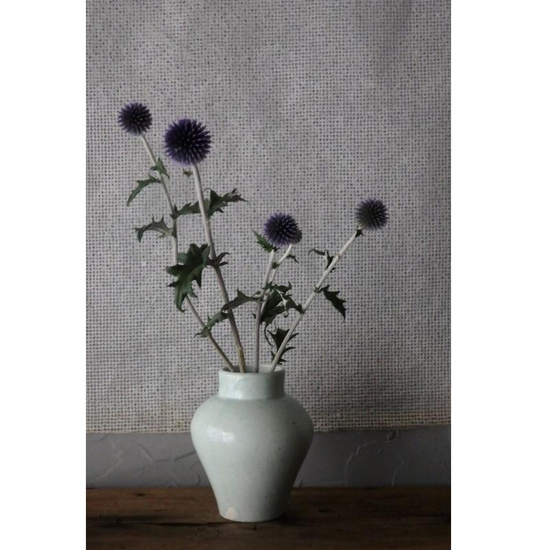 煎茶と花 - 花の章 -_f0351305_00050398.jpeg