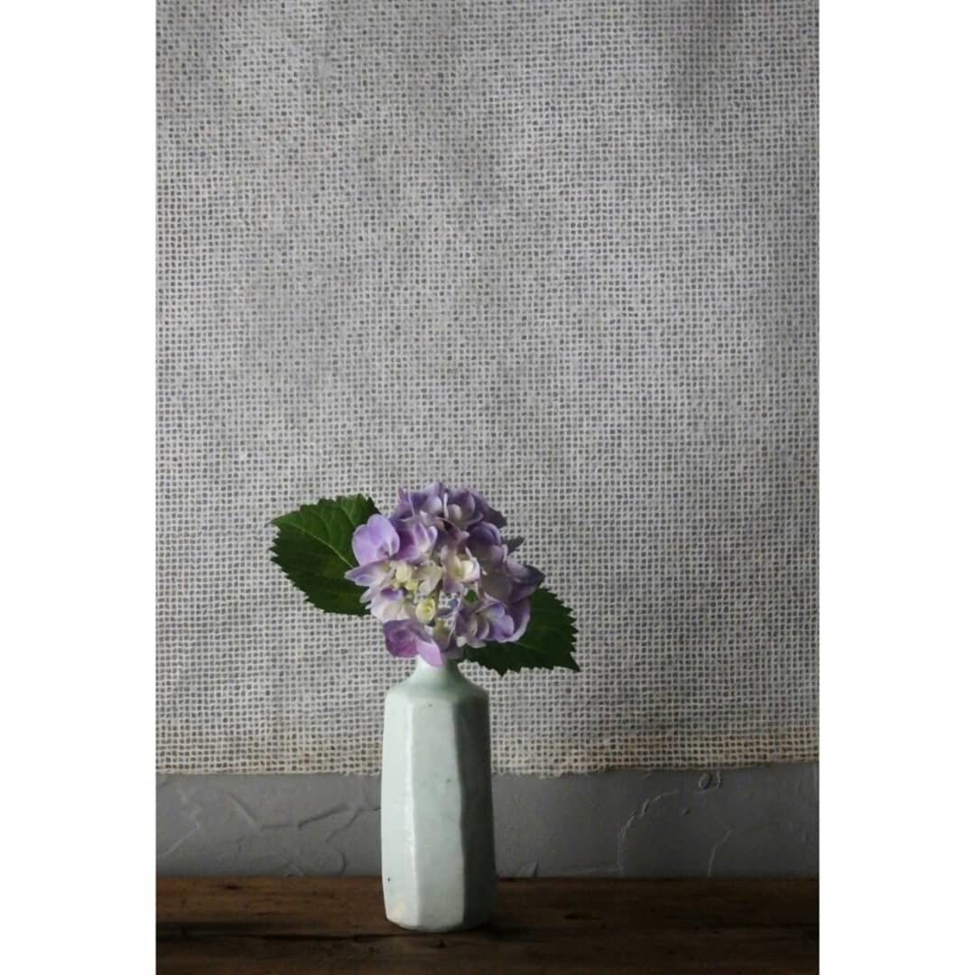 煎茶と花 - 花の章 -_f0351305_00052773.jpg