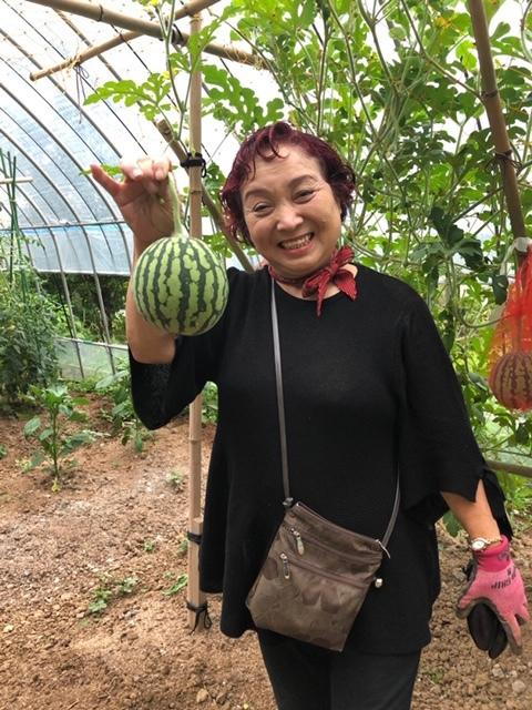 平山旅館梅収穫ツアー行ってきました。_c0125114_15272588.jpg