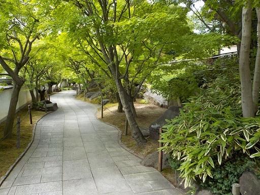 不洗観音寺 初夏の風景_f0045132_12023880.jpg