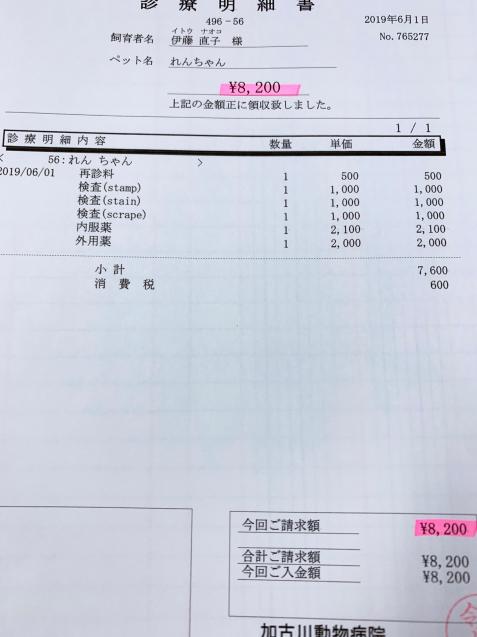 れんちゃん医療費の収支報告とお洋服事情。_d0355333_13444804.jpg