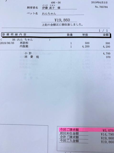 れんちゃん医療費の収支報告とお洋服事情。_d0355333_13444923.jpg
