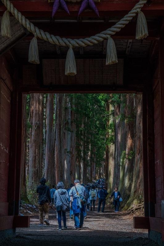 戸隠神社・奥社_e0363038_10171766.jpg