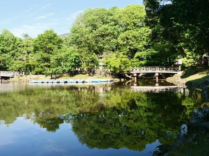 奈良公園 浮見堂  2019-06-17 00:00   _b0093754_21083102.jpg