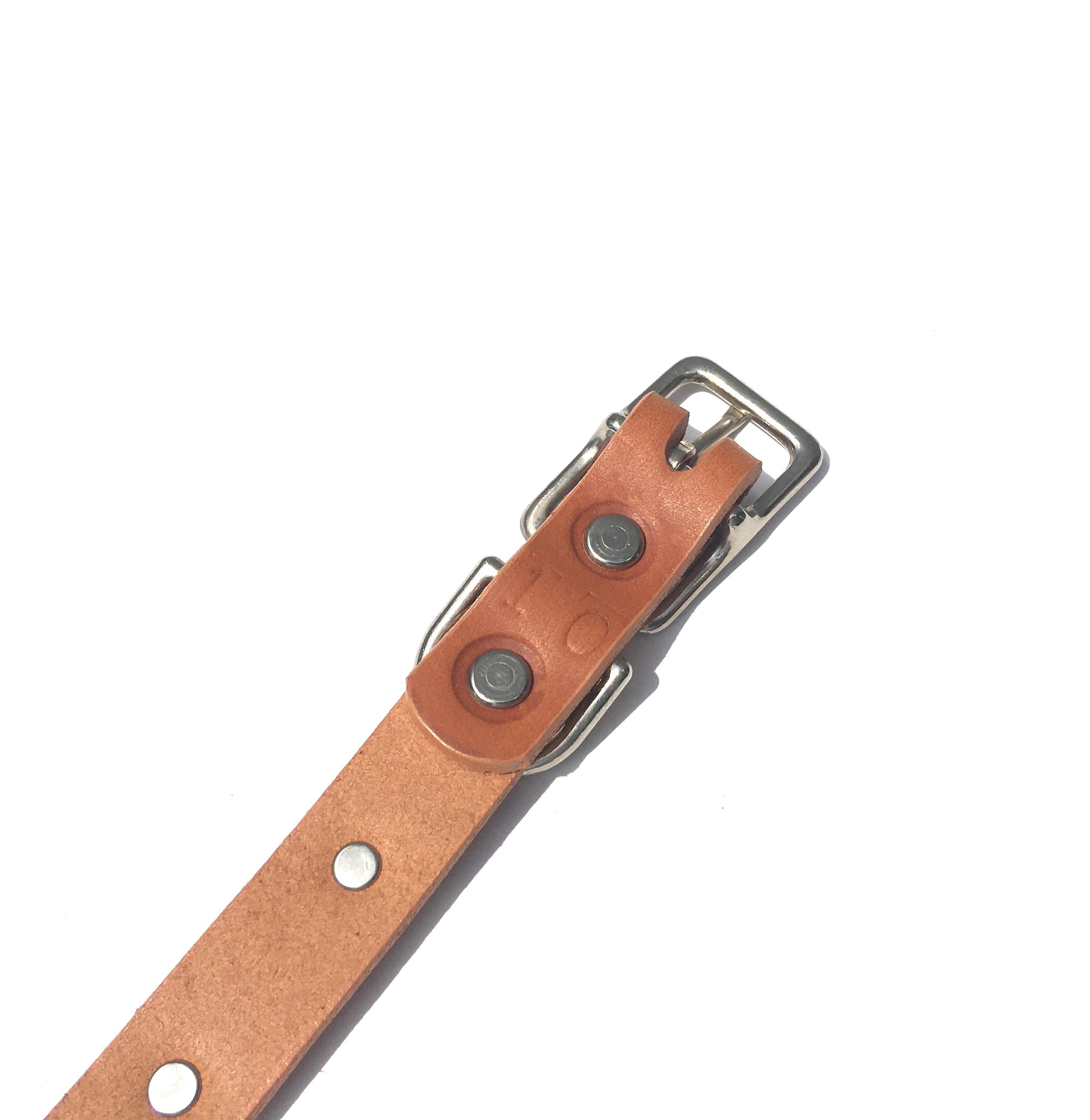 Dog La Star COLLAR ドグラ スター カラー 3/4インチ(2cm幅) 別注10インチ_d0217958_11225435.jpg