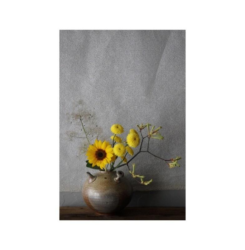 煎茶と花 - 花の章 -_f0351305_22522860.jpeg